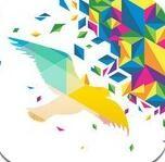一个奇鸽app官方版