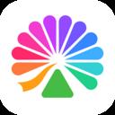 大麦网官方订票app