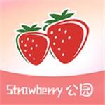 草莓公园app