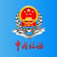四川省电子税务局app