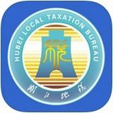 湖北电子税务局app