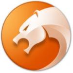 猎豹浏览器电脑版  v6.0