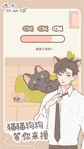 遇见你的猫破解版下载