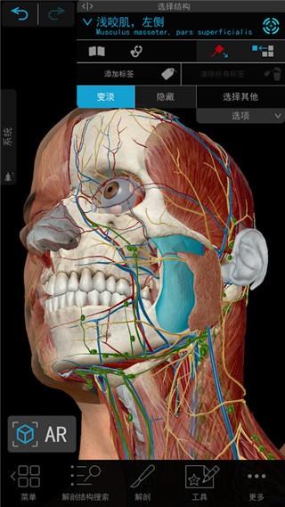 2021人体解剖学图谱苹果破解版下载