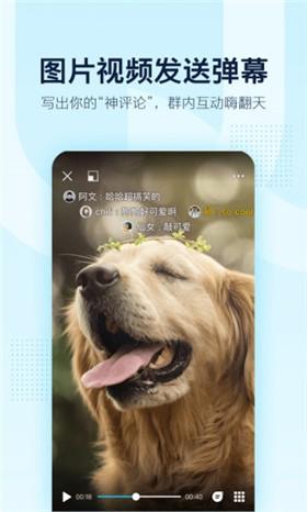 qq手机版下载安装2021最新版